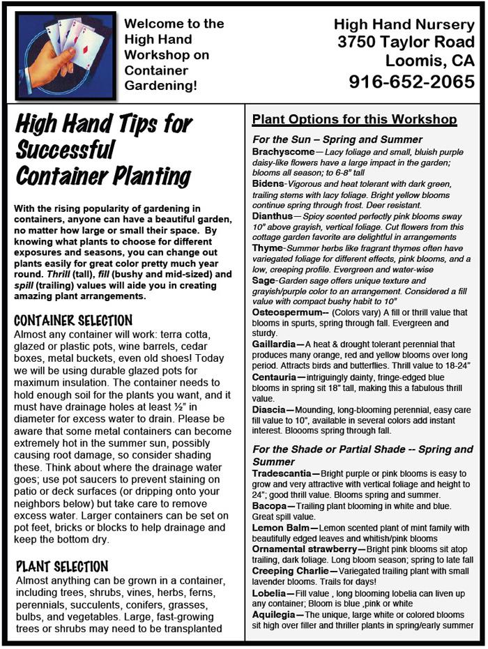 Container Garden pg1