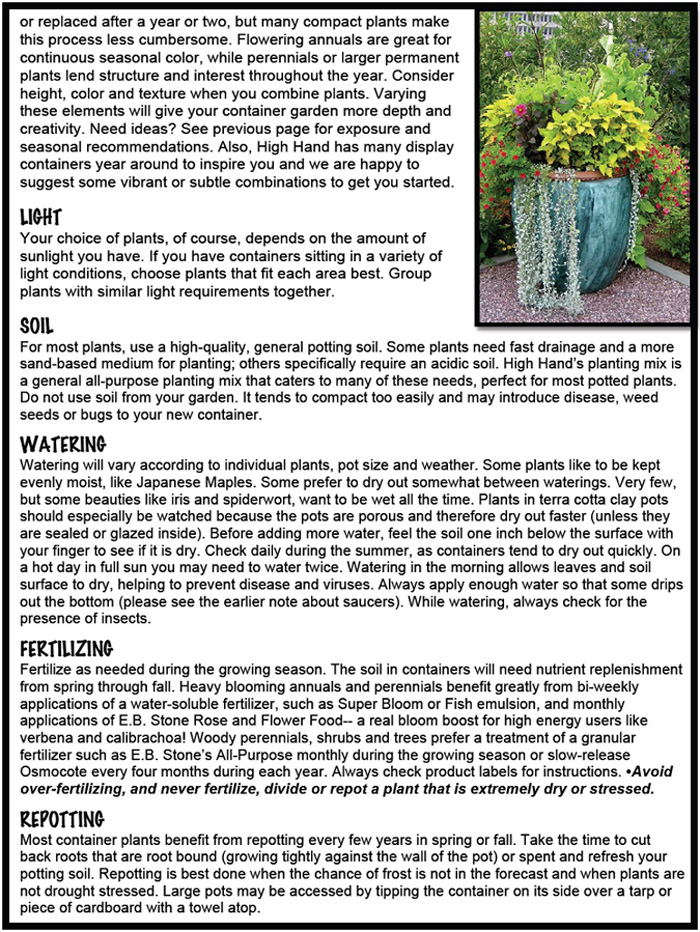 Container Garden pg2